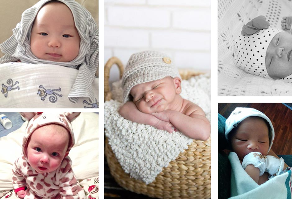 Community & Blog - Baby Thyme Gallery